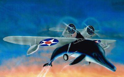 Aeromania: Douglas RD-3 Dolphin